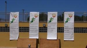 24 Stunden Mallorca zugunster der Peter Maffay Tabaluga Stiftung